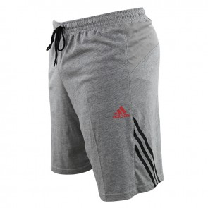adidas Base Trainings Shorts grau